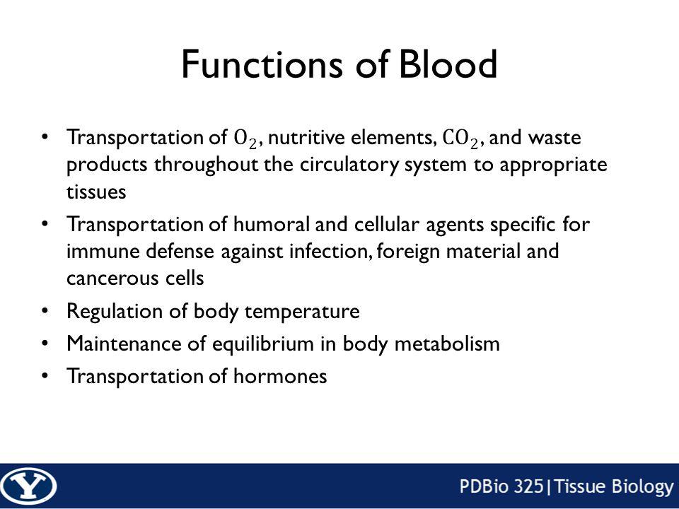 Blood And Hematopoiesis Functions Of Blood Hematopoiesis Higher
