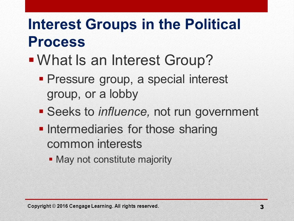 political interest groups characteristics