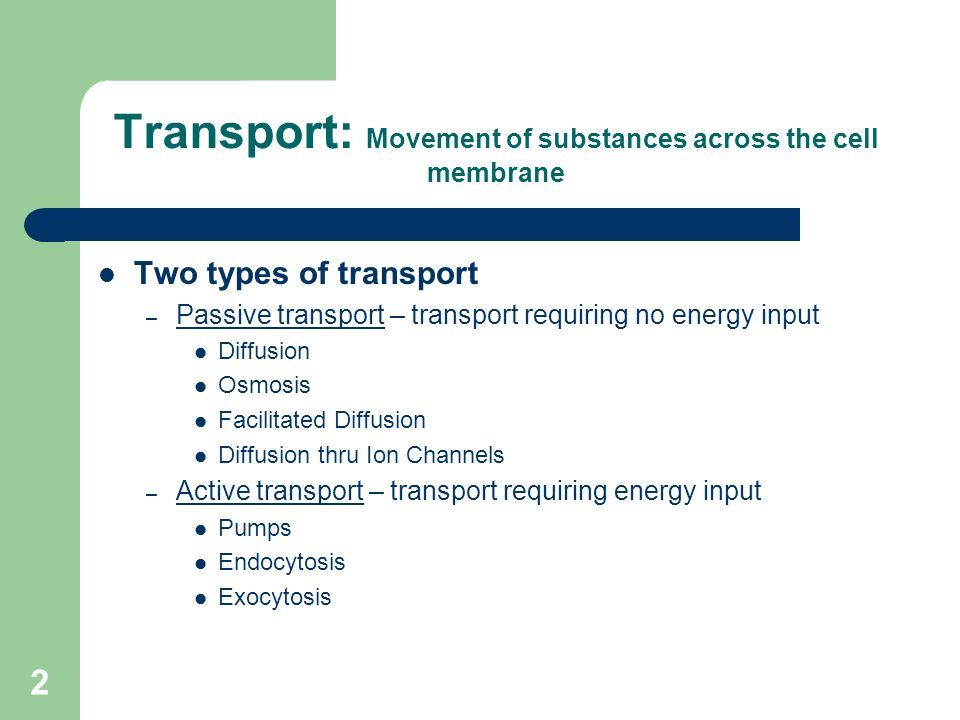 1 Chapter 5 Homeostasis & Transport Topics: Passive & Active
