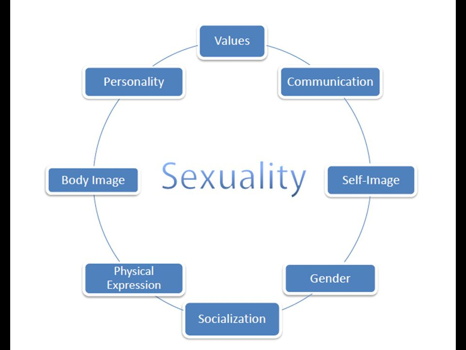 A Test Of A Conceptual Model Of Sexual Self
