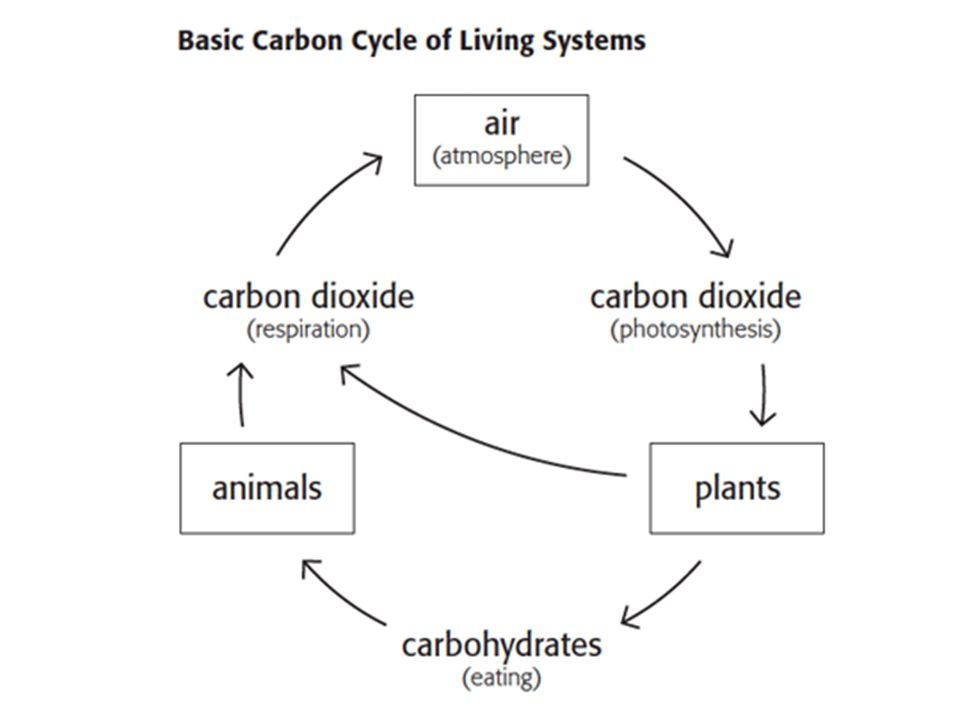 Ecology the study of living organisms and their environment ppt 41 ccuart Gallery