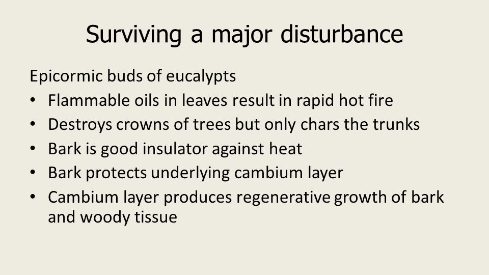 VCE Biology Unit 2 Area of Study 01 Adaptations of Organisms