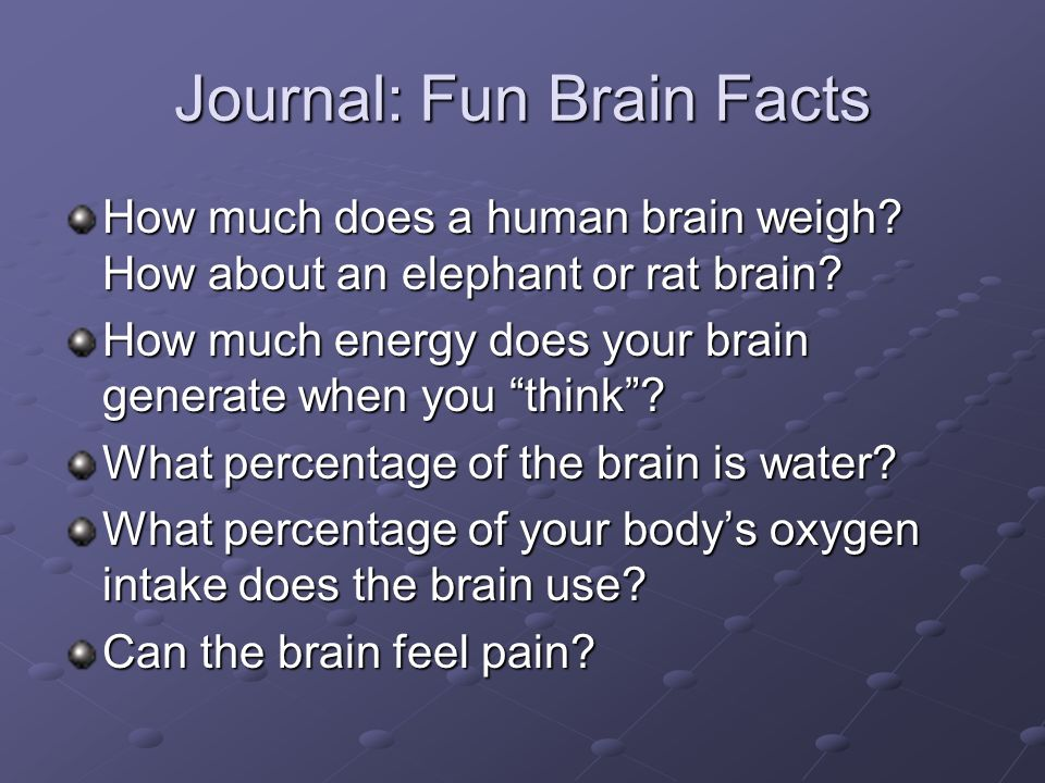 The Nervous System Health Science Technology. Journal: Fun Brain ...