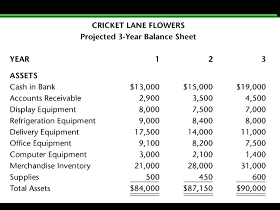 26 projected 3 year balance sheet a financial plan for cricket lane flowers