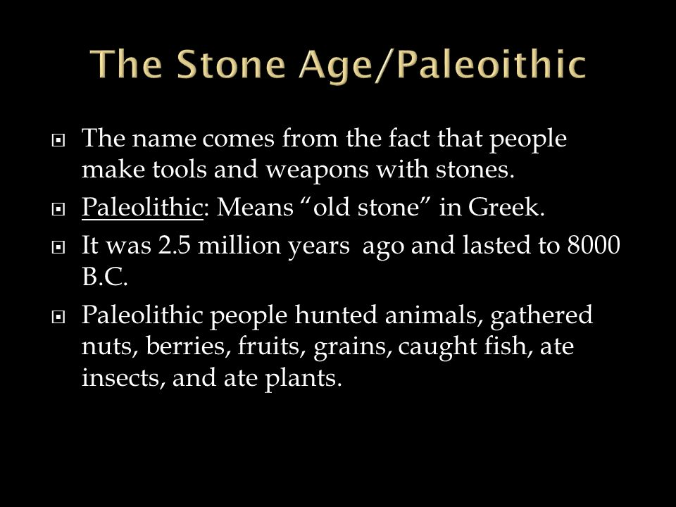 paleolithic means new stone age