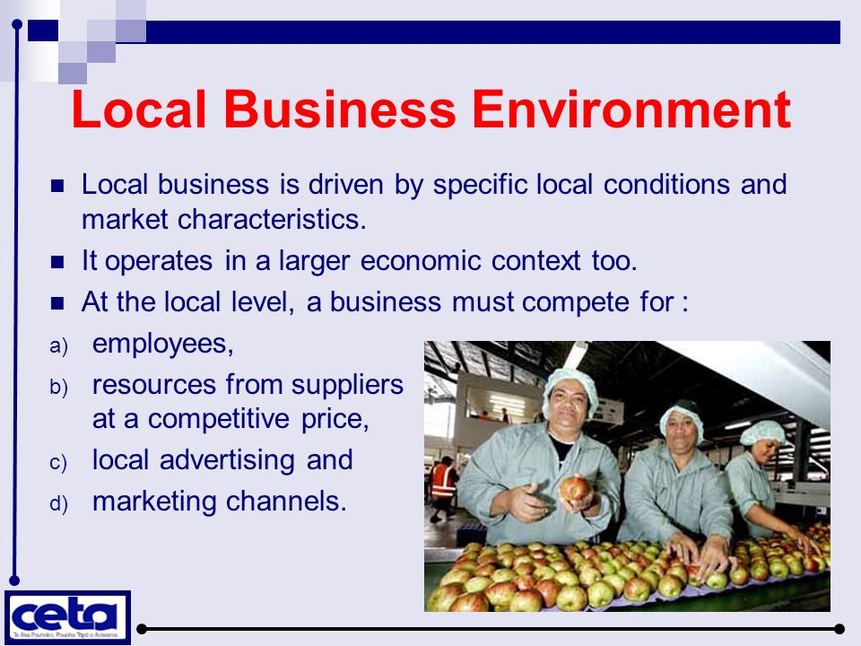 characteristics of small business owners
