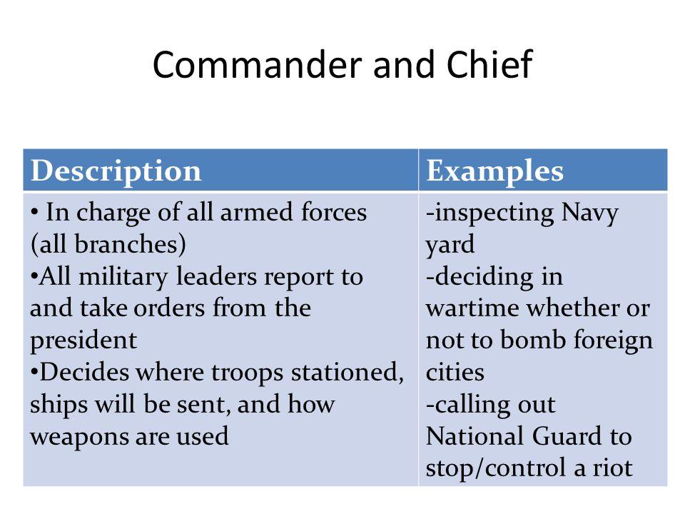 jobdescription examples 2b chief executive commander and chief head