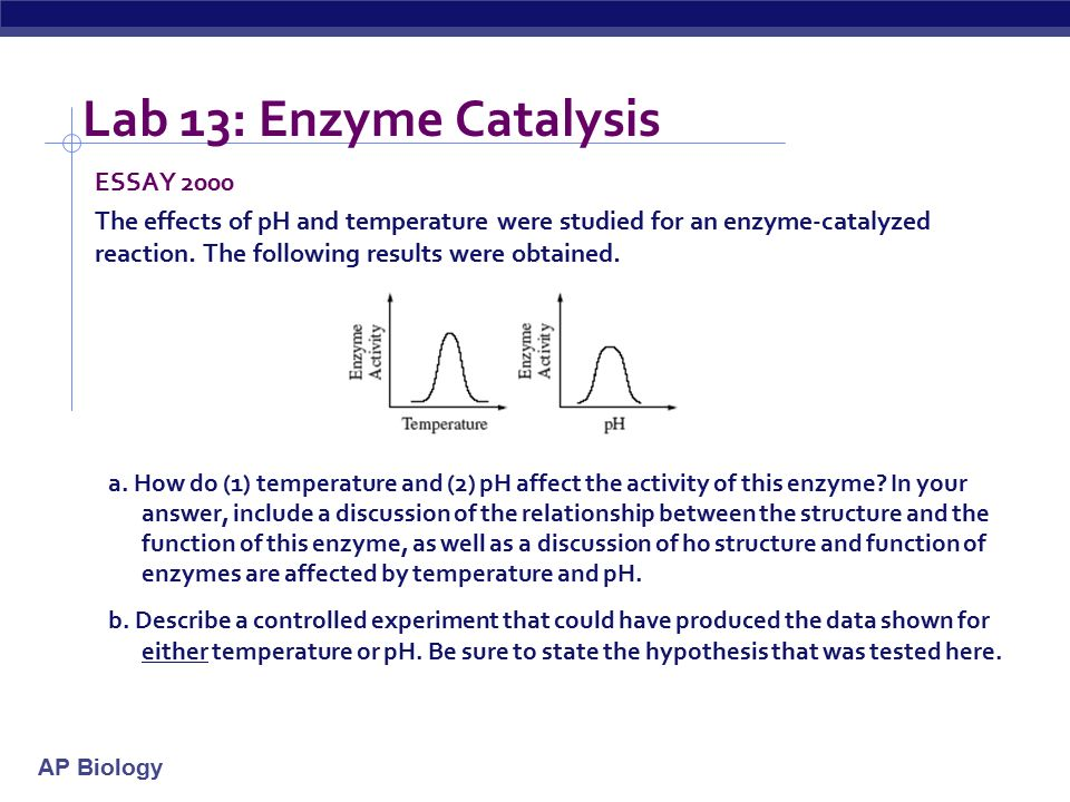 enzyme catalysis lab results