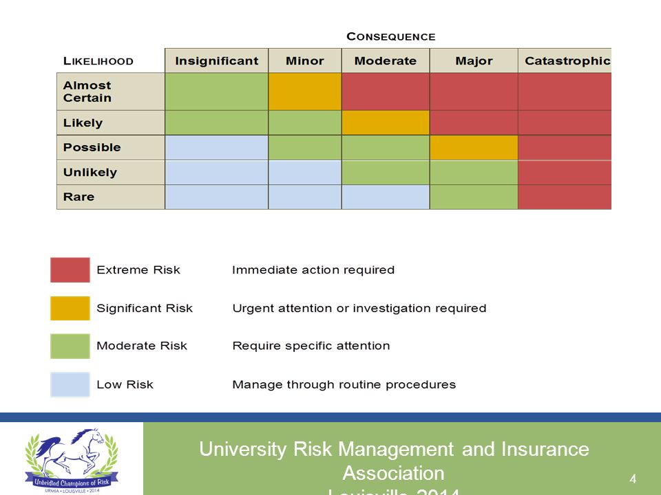insurance risk management template  The Action Planning Process