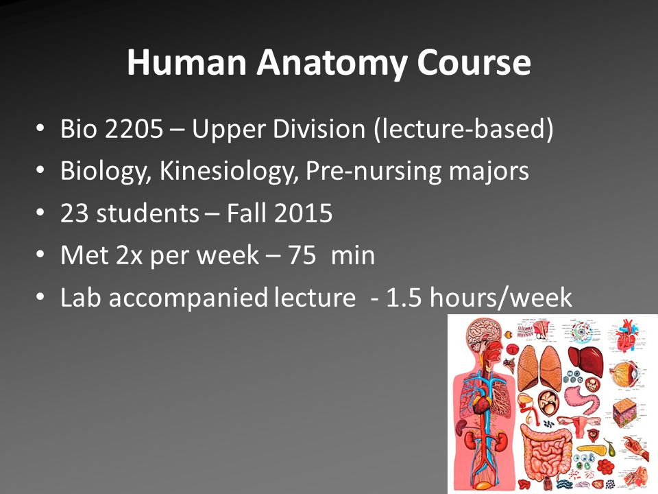 Human Anatomy: Assessment in Memory Recall Certificate of College ...