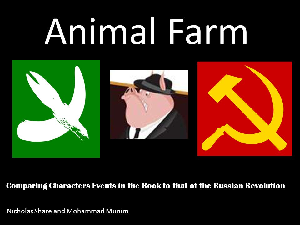 Comparing Characters Events In The Book To That Of The Russian