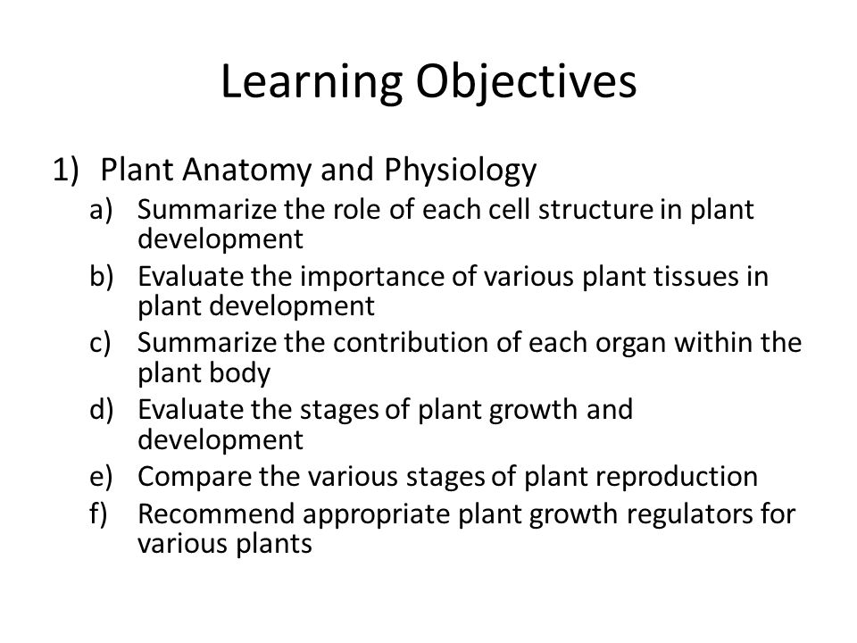 Plant Anatomy and Physiology. Learning Objectives 1)Plant Anatomy ...