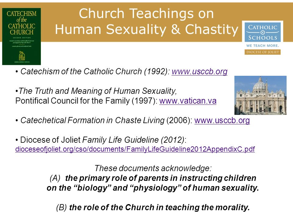 Catholic teaching on sexuality