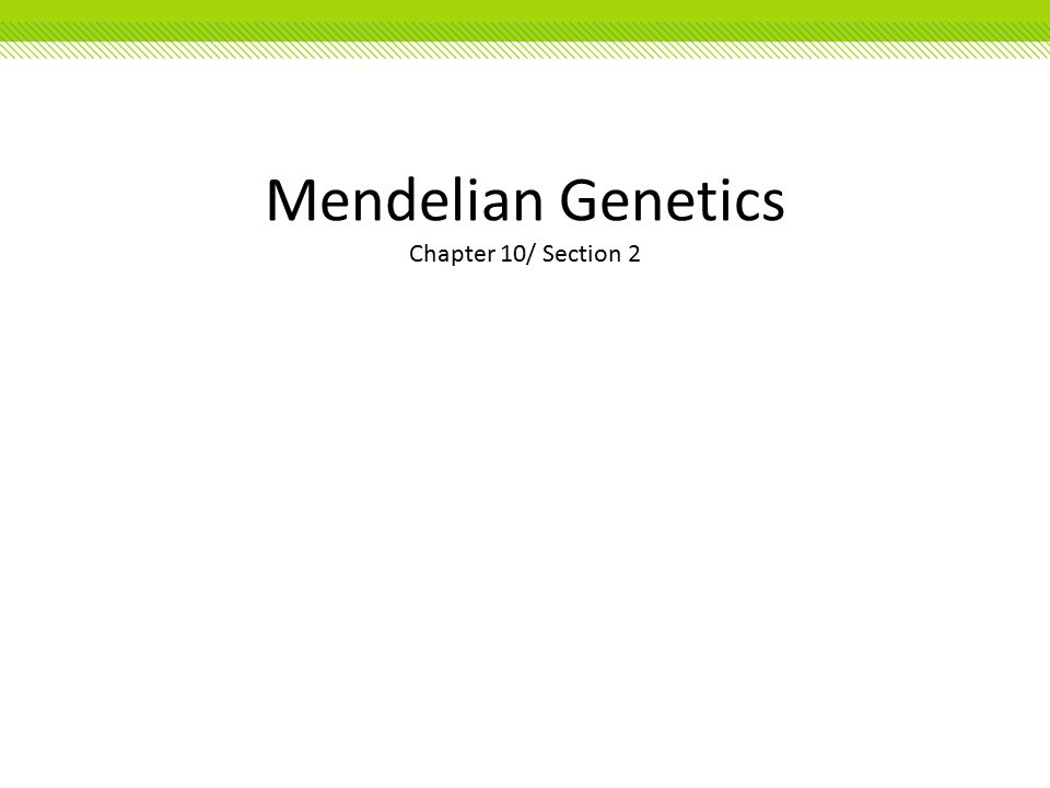 Section 2 mendelian genetics study guide chapter 10 answers array mendelian genetics chapter 10 section 2 mendelian genetics rh slideplayer com fandeluxe Image collections