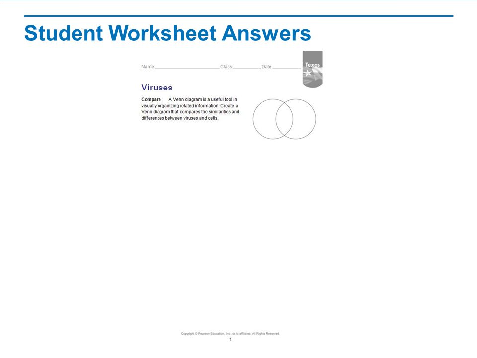 Wele 321 And 322 1 Virus Reproduction Disease Notes. 26 Student Worksheet Answers. Worksheet. 20 1 Viruses Worksheet Answer Key At Clickcart.co