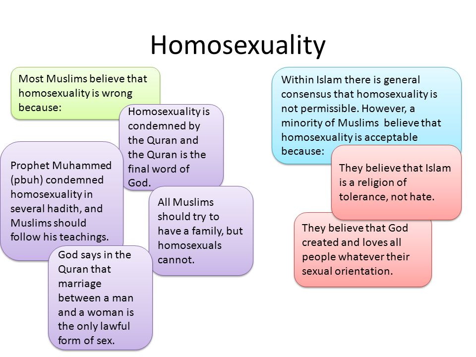 Is homosexuality not allowed in islam