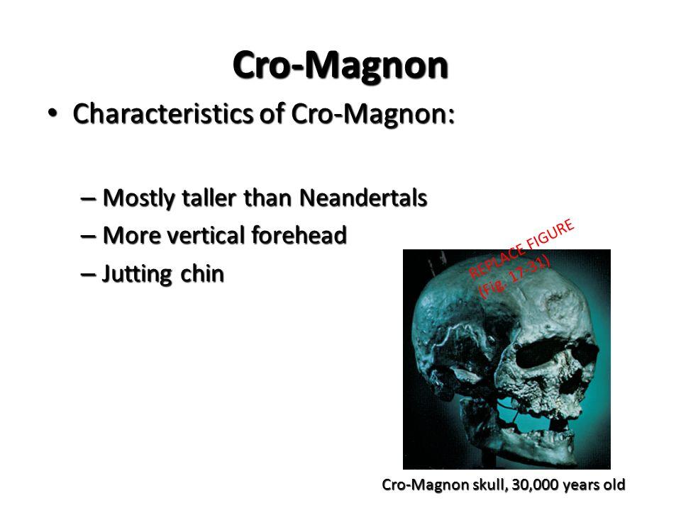 cro magnon characteristics