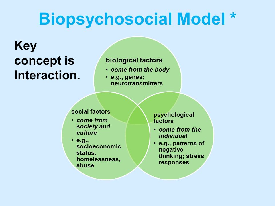biological psychological factors crime The biological basis of crime adrian raine  yet few serious scientists in psychology and psychiatry would deny that biological factors are relevant to understanding  environmental factors in addition give rise to biological risk factors for crime) it then turns to a discussion of psychophysiological factors that 43.