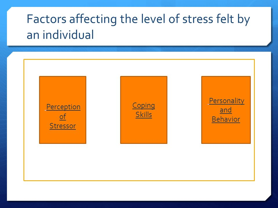 Factors affecting the level of stress felt by an individual Perception of Stressor Coping Skills Personality and Behavior