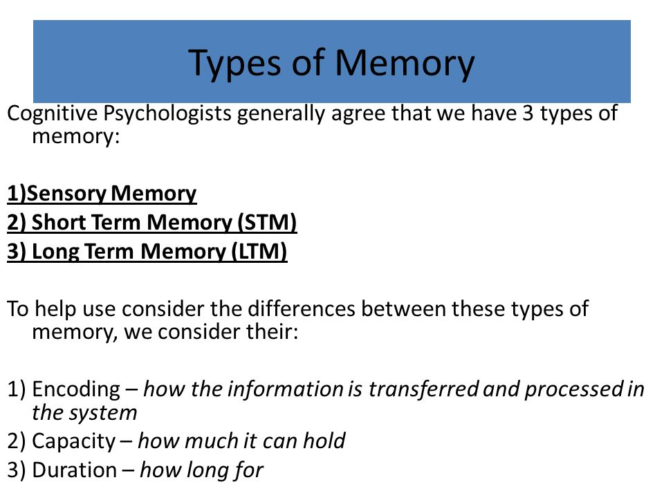 difference between short term memory and long term memory
