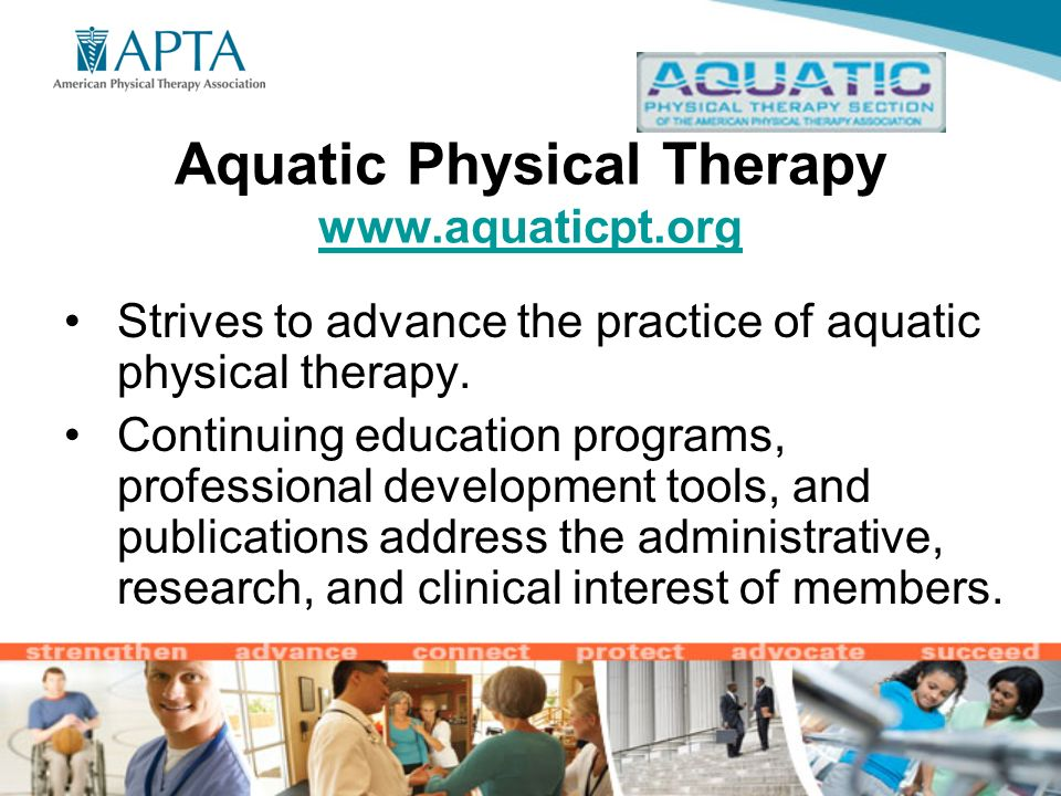 Explore Your Interests APTA Section Membership. Benefits of Section ...