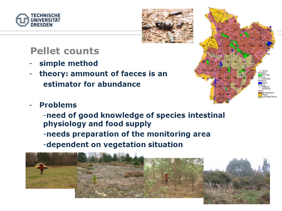 Pellet counts -simple method -theory: ammount of faeces is an estimator for abundance -Problems -need of good knowledge of species intestinal physiology and food supply -needs preparation of the monitoring area -dependent on vegetation situation