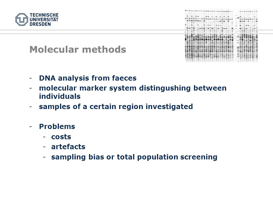 Molecular methods -DNA analysis from faeces -molecular marker system distingushing between individuals -samples of a certain region investigated -Problems -costs -artefacts -sampling bias or total population screening