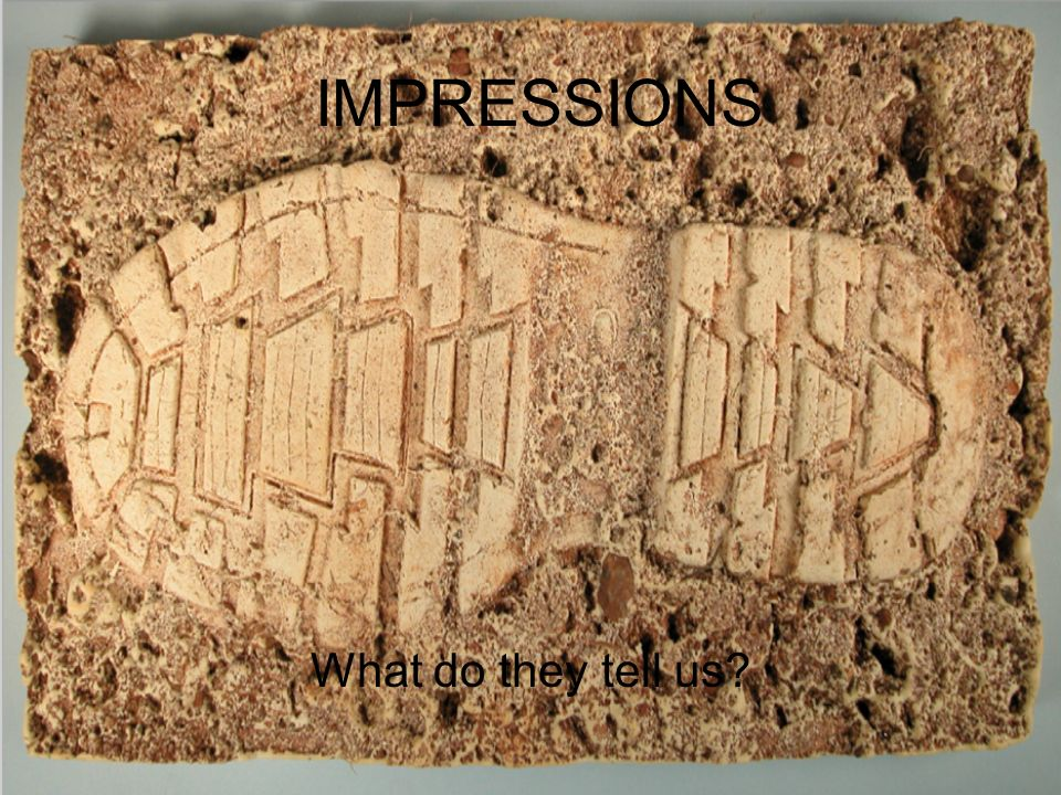 What Do They Tell Us Impressions Forensic Impressions Shoes Are A Fascinating Item Of Clothing Since Criminals Must Enter And Exit Crime Scene Areas Ppt Download