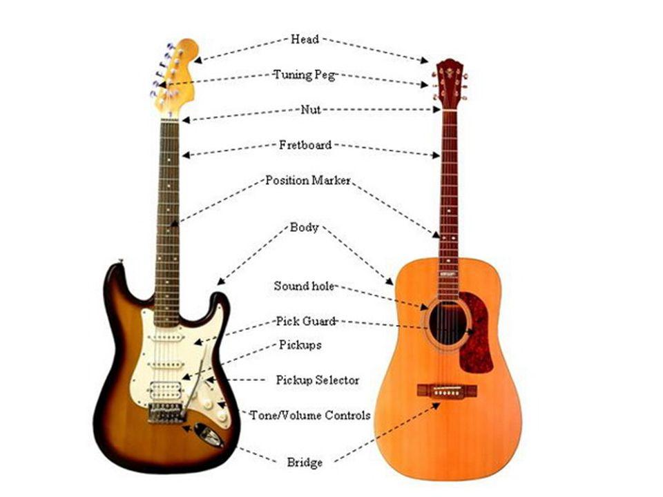 Guitar Guitar Parts Guitar E Standard Tuning String Names Elvis