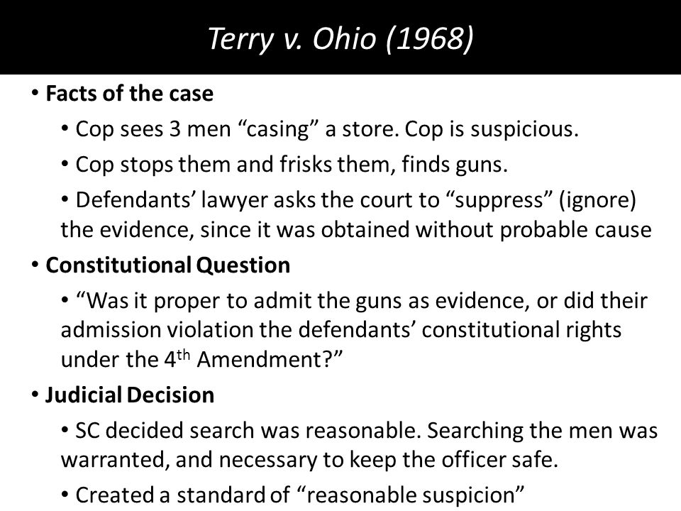 terry vs ohio case brief