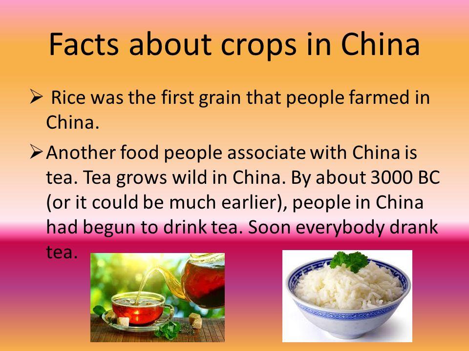 food grains grown in india