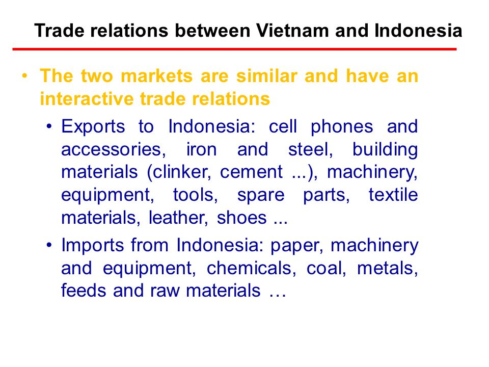 Approaching Indonesia Market Le Hong Minh – Chief representative of