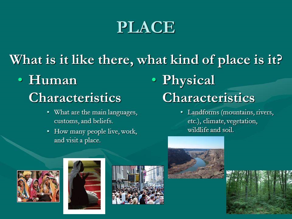 characteristics of social studies