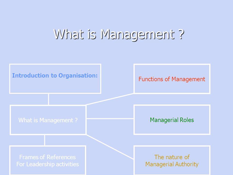 Welcome to Organization & Behavior Wassim Haidar – Mechelle Lewis ...