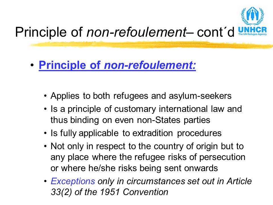 United Nations High Commissioner for Refugees (UNHCR) Workshop on