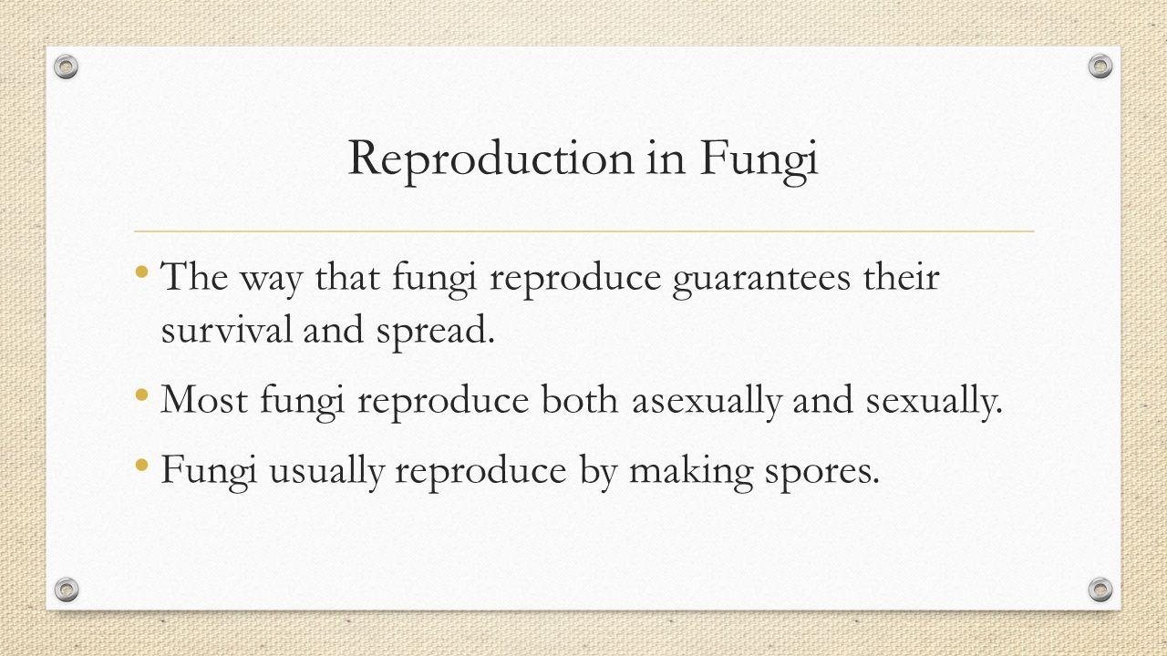 Fungi reproduce both asexually and sexually. true false