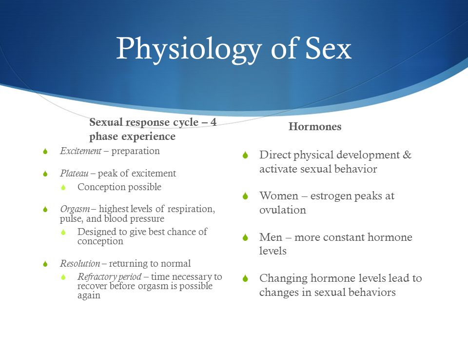 Plateau stage of the sexual response cycle