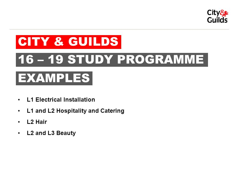 City Guilds 16 19 Study Programme Examples L1 Electrical