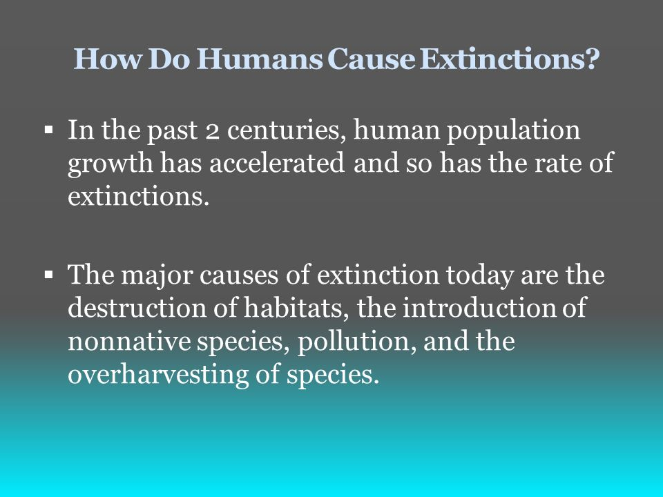 major causes of extinction