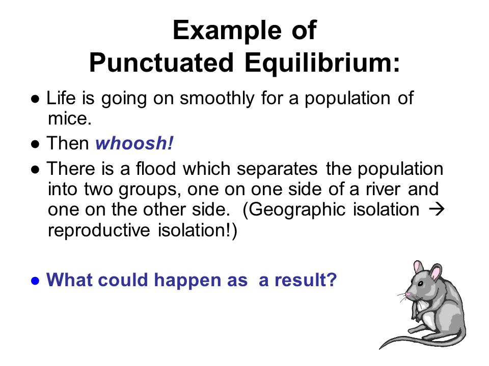 punctuated equilibrium examples
