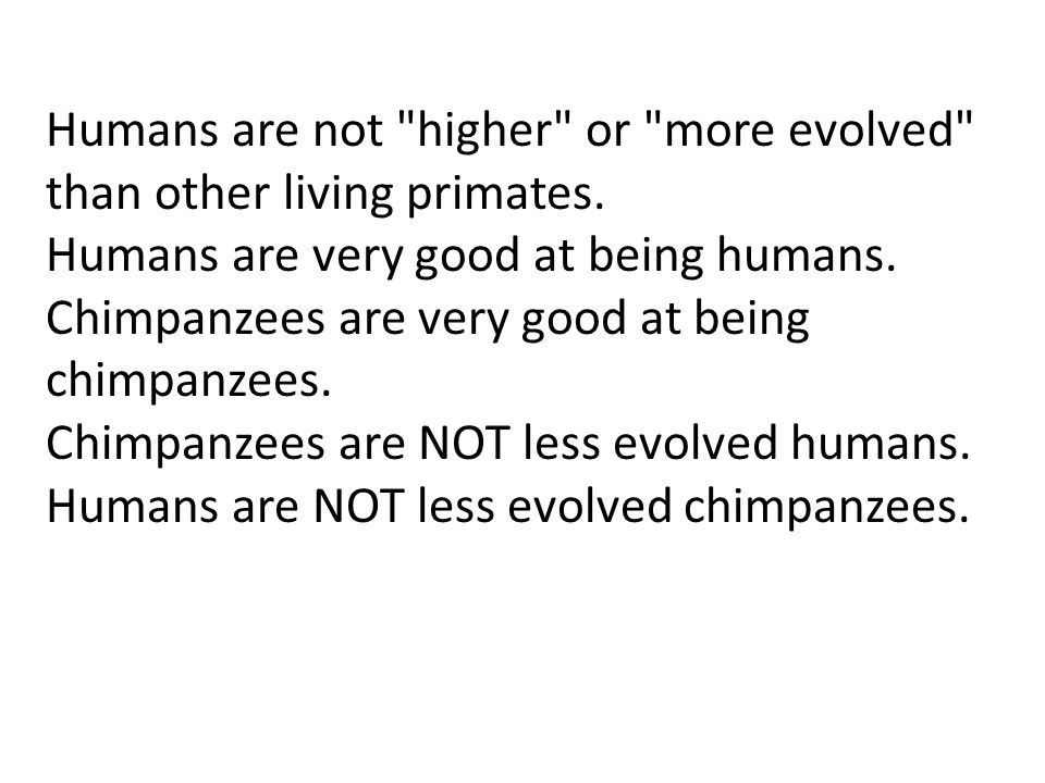 Humans are not higher or more evolved than other living primates.