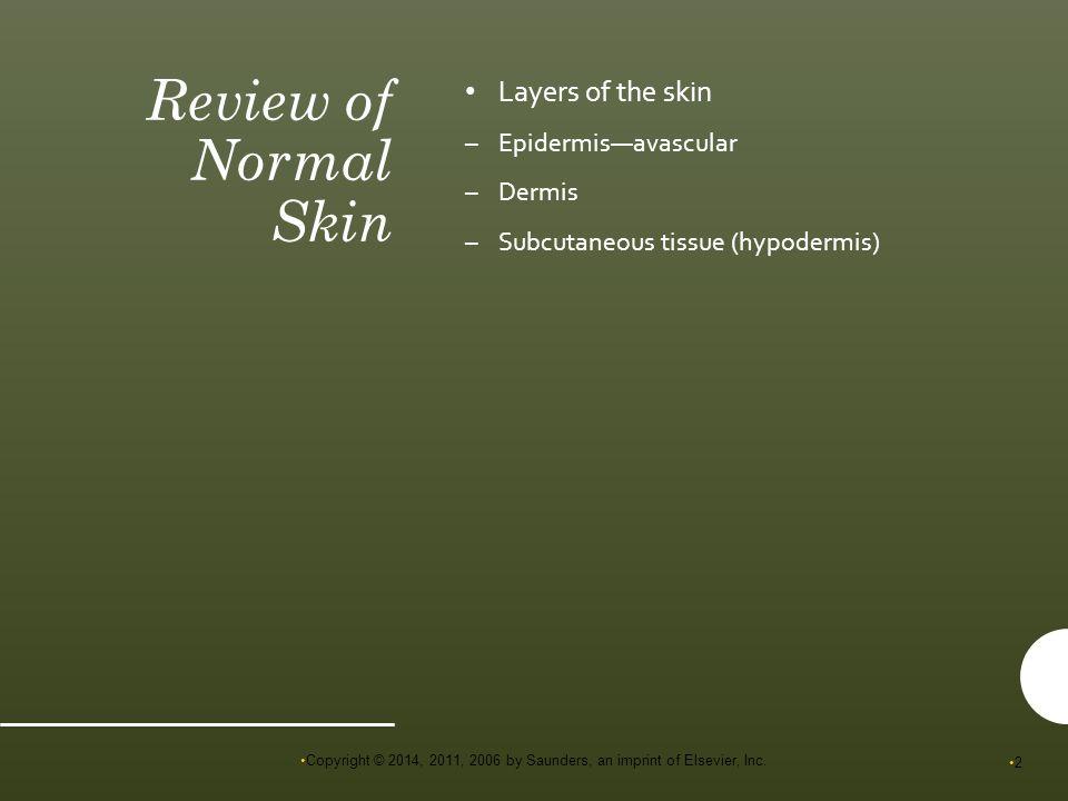 skin msn 2011
