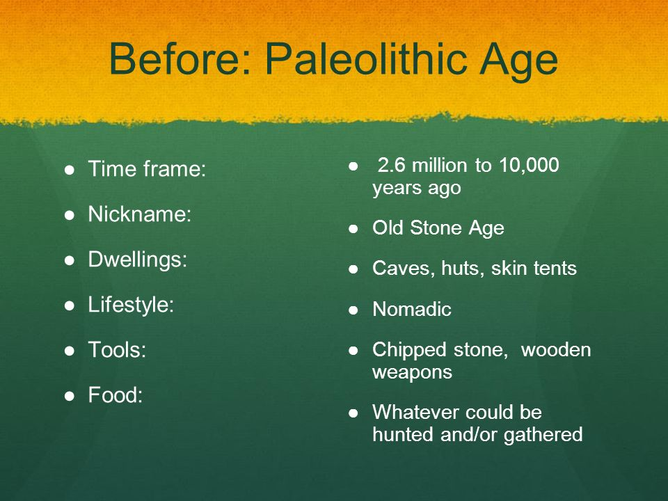 paleolithic age time period