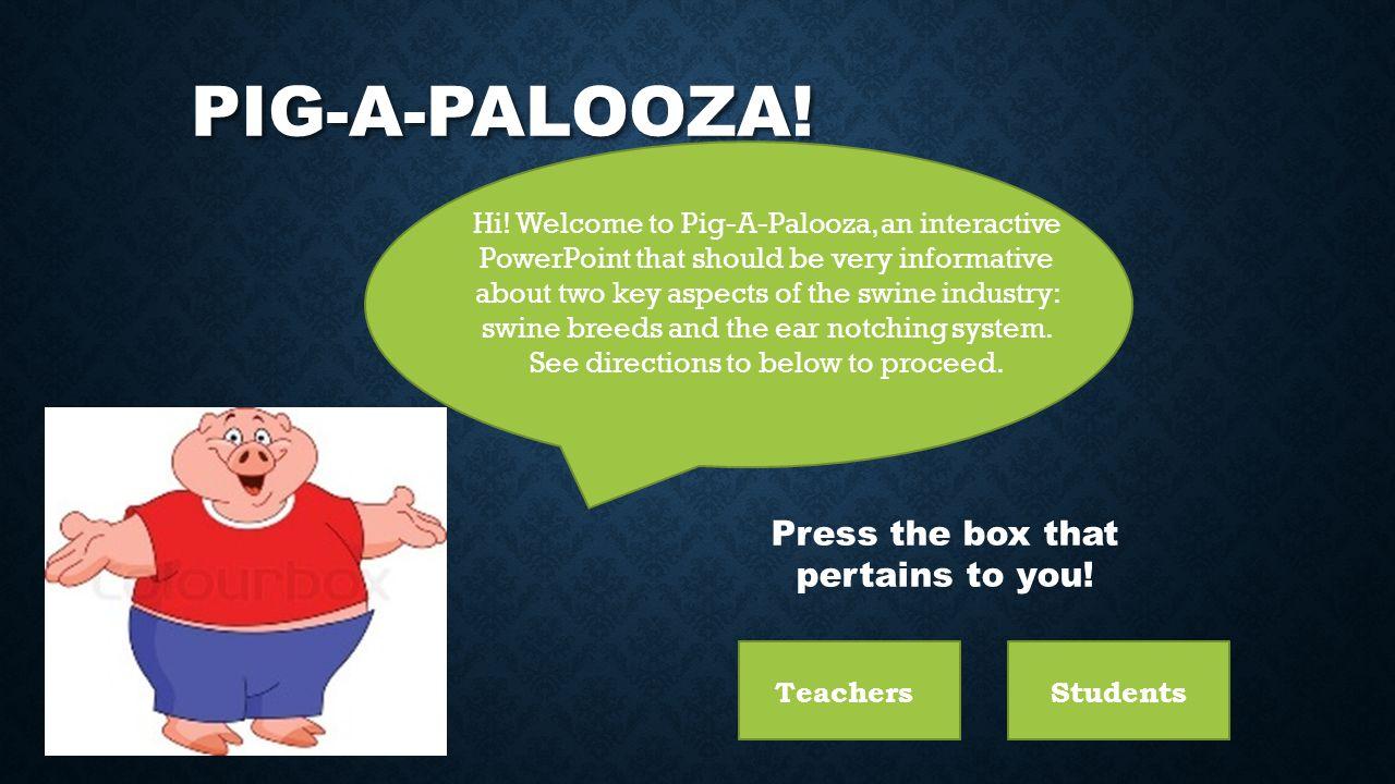 PIG-A-PALOOZA! Hi! Welcome to Pig-A-Palooza, an interactive