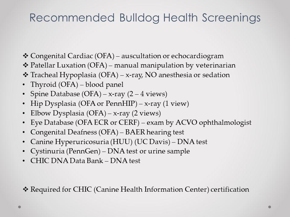 Melanie Trichler BCA Health Committee Division V Bulldog Health ...
