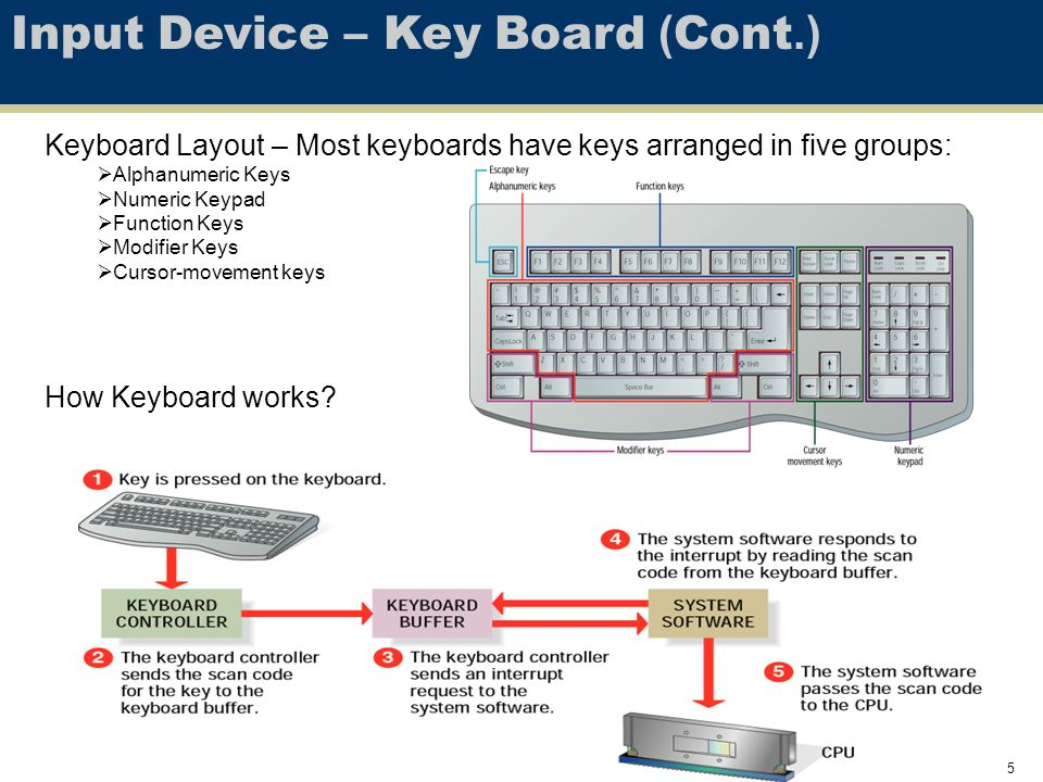 1 LESSON 3 – HARDWARE AND PERIPHERAL DEVICE CSE 101 Summer ppt download