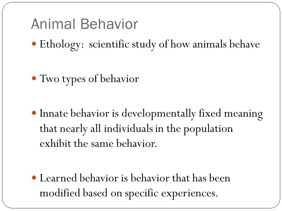 Chapter 43 Animal Behavior Ethology Scientific Study Of How