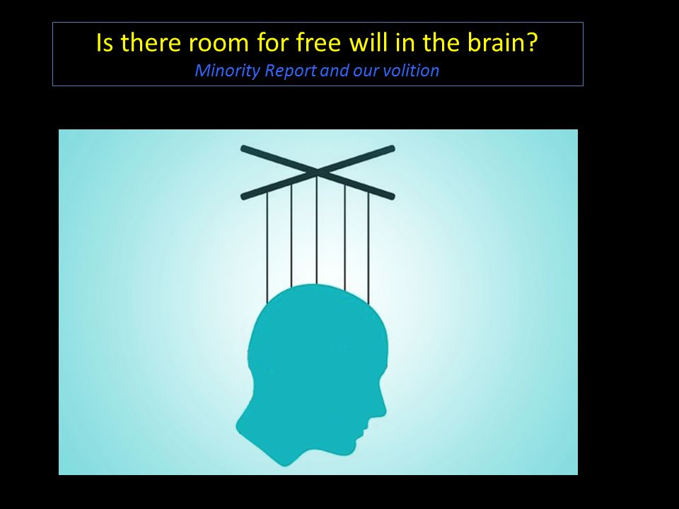 minority report free will