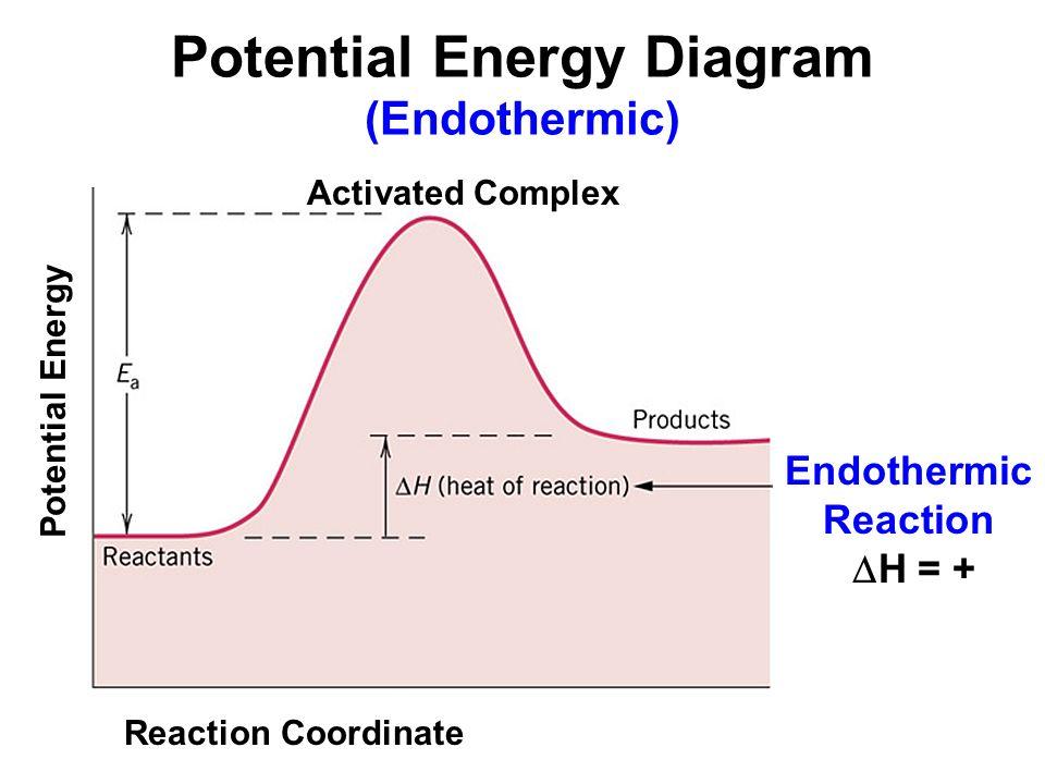 Endothermic Potential Energy Diagram Energy Etfs