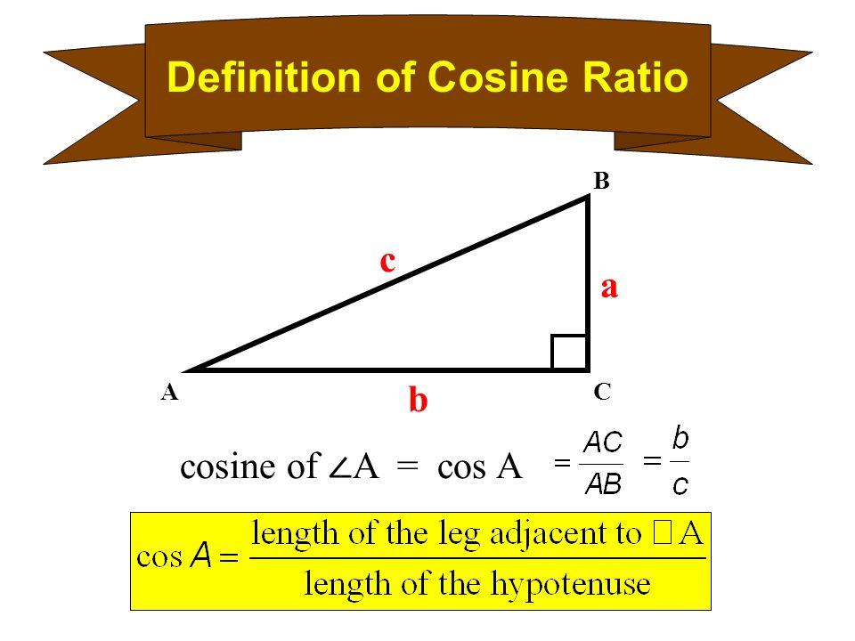 Lesson 8 6 The Sine And Cosine Ratios Page 312 The Sine Ratio And